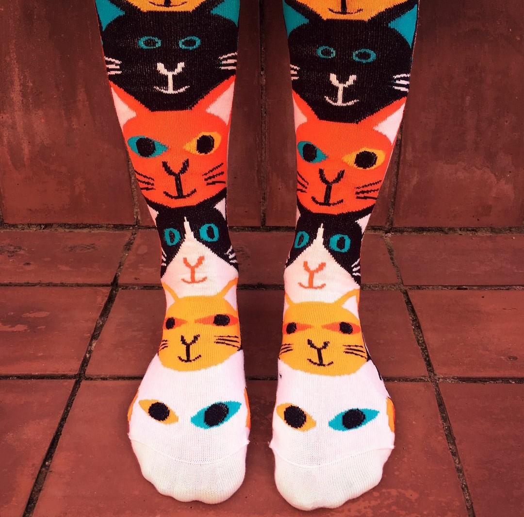 calcetines gatos de la ilustradora Marta Altés
